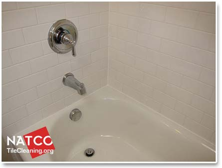 mold free clean ceramic tile shower